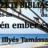 2016. 06. 26 – Délutáni alkalom – Körzeti Bibliás Est – Illyés Tamás
