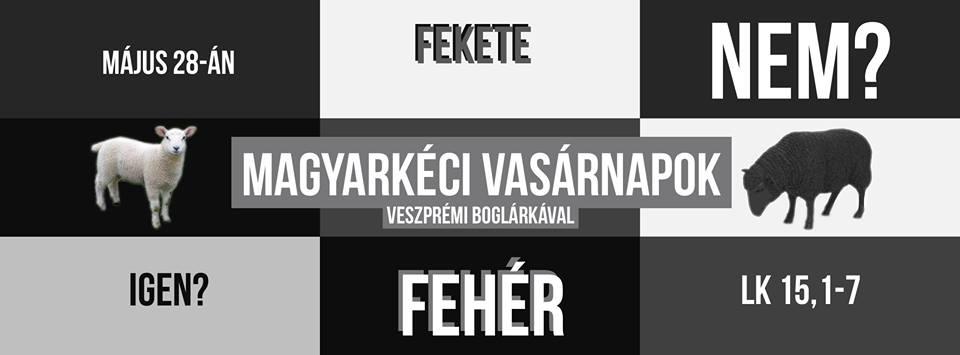 2017.05.28. – Délelőtti alkalom – Veszprémi Boglárka – Lk 15, 1-7