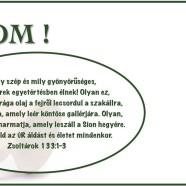 2014.02.05.-Imaheti alkalom-Csomay Árpád-Jn.4:7-15