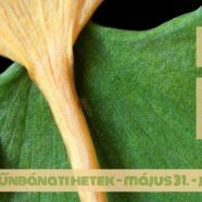 2016.06.01. – Bűnbánati alkalom – Mike Pál – Ef 2,14-16